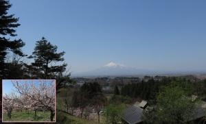 津軽富士の白が青空に映える