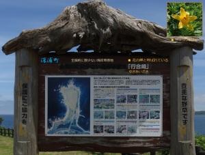 青空の下、岬を散策