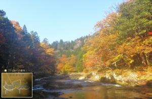 渓流にも紅葉が映る