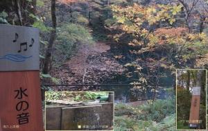 沸壷の池へ2